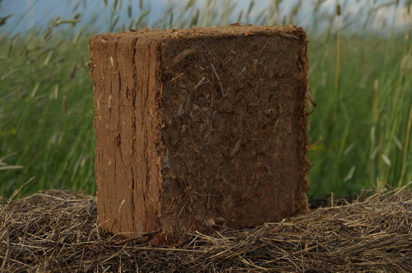 Преимущества посадки рассады в кокосовый субстрат