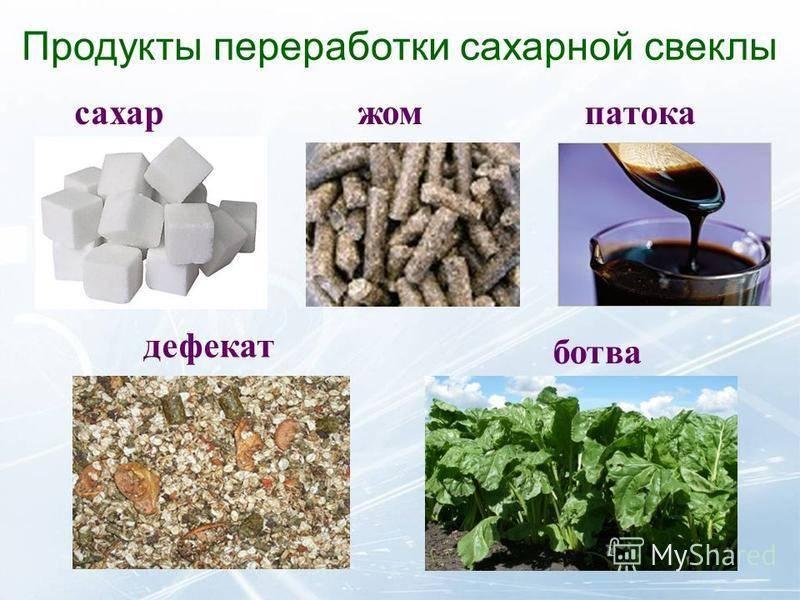 Высоко переработанные продукты: чего именно и почему стоит избегать