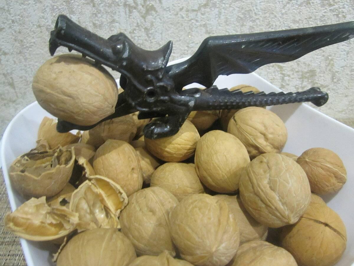 Как хранить грецкие орехи в домашних условиях (очищенные и в скорлупе)