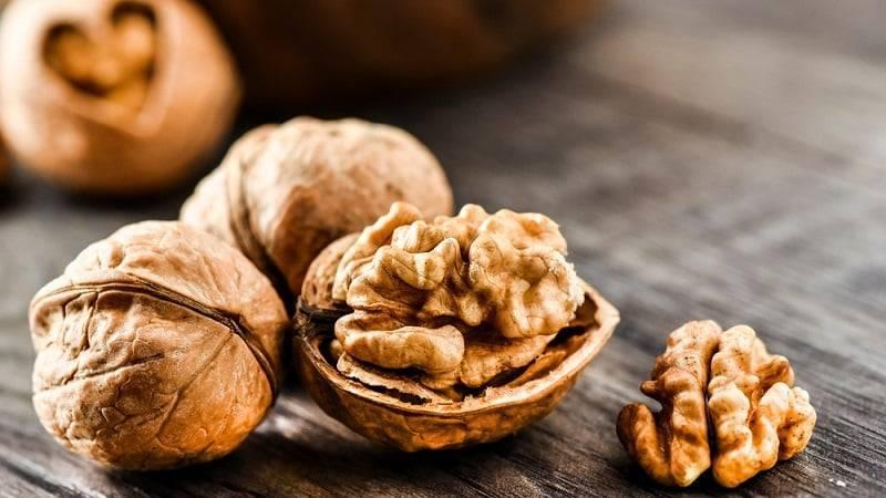 Полезные свойства и противопоказания грецкого ореха, польза и вред для разных людей