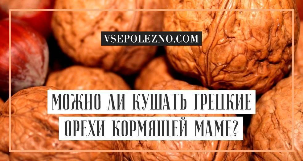Какие орехи можно кормящей маме: список