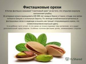 Фисташки – состав и полезные свойства ореха