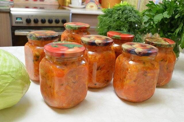 Приготовление из капусты восхитительной солянки: рецепты на зиму