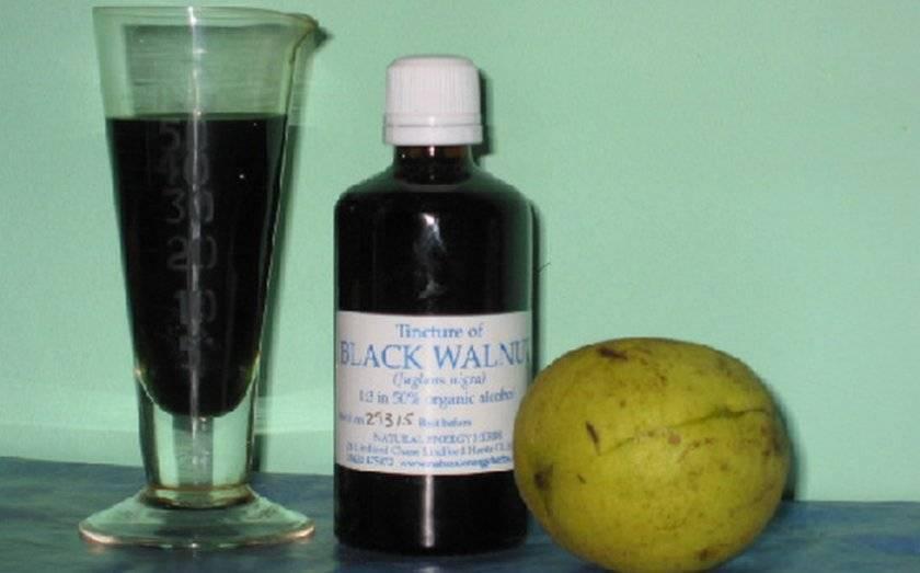 Настойка черного ореха: противопоказания, применение, инструкция по приему