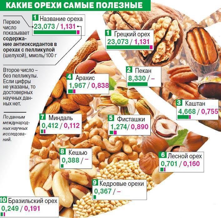 Орехи кешью: польза и вред для организма, противопоказания, сколько можно съесть в день
