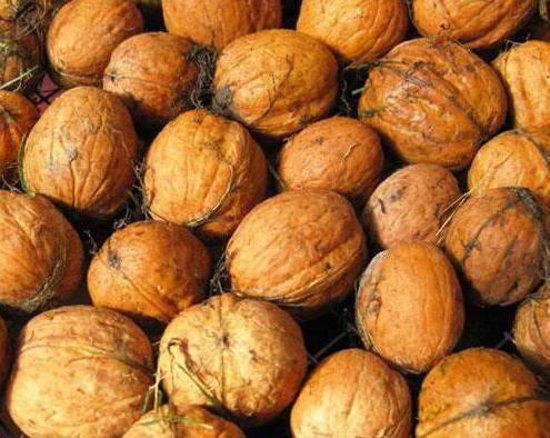Как правильно хранить очищенные и в скорлупе грецкие орехи