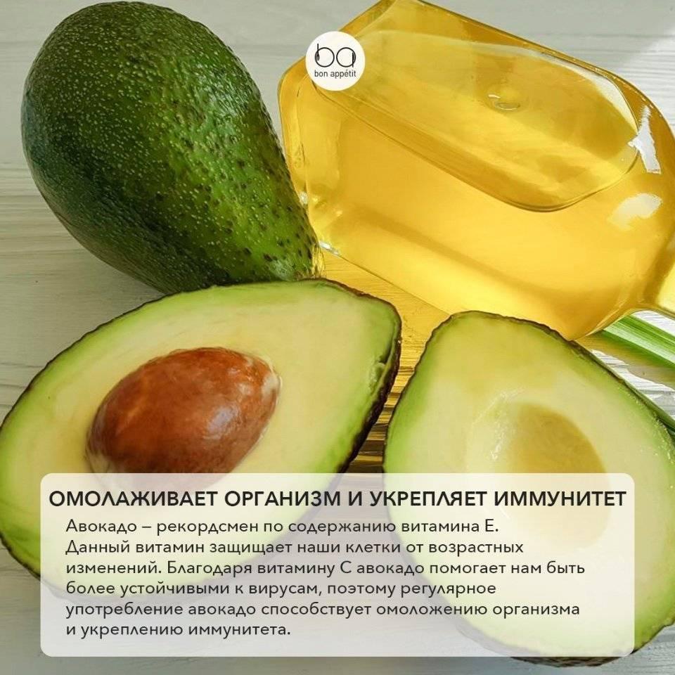 Орех авокадо: применение и полезные свойства