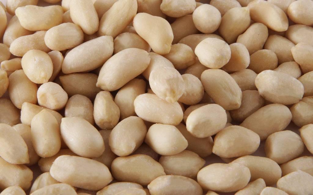 Арахис: вред и польза для организма человека, калорийность на 100 грамм