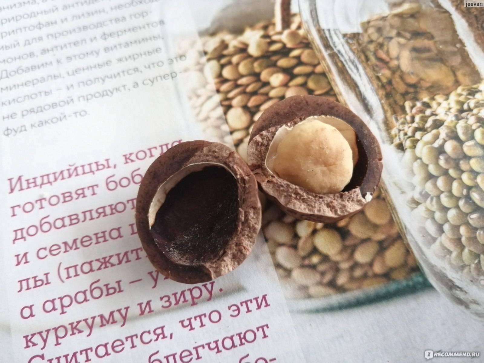 Масло макадамии — применение свойств в домашней косметологии, отзывы | здорова и красива