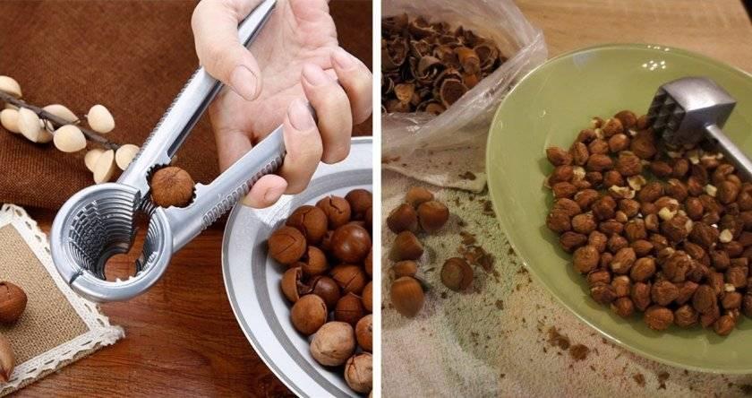 Как хранить орехи в домашних условиях: как правильно очистить от скорлупы, нужно ли их мыть
