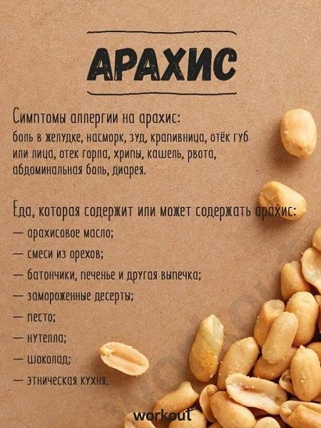 Арахис: полезные свойства и противопоказания земляного ореха