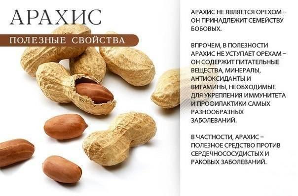 Можно ли кушать арахис людям при повышенном холестерине?