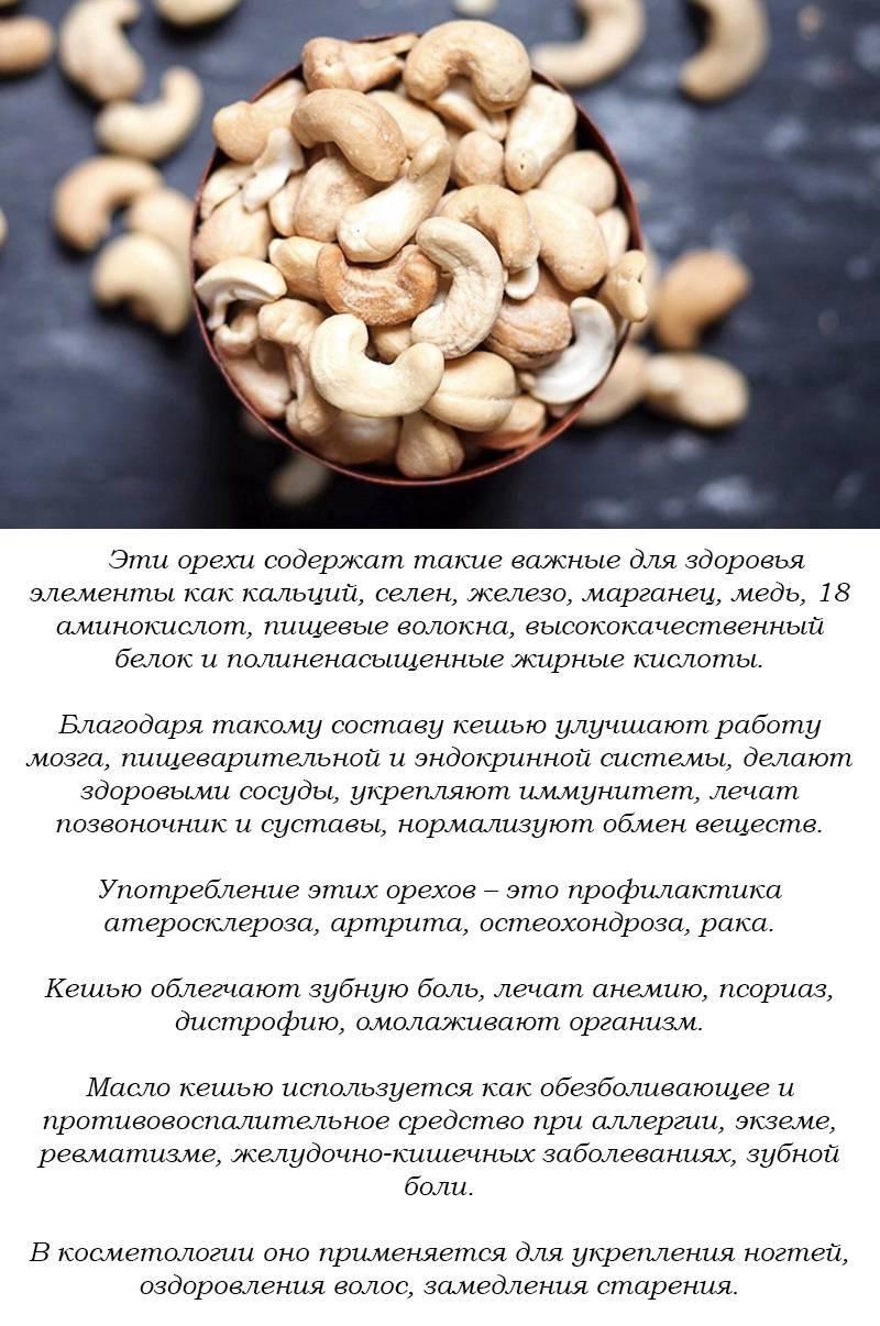 Орехи для потенции у мужчин: какие самые полезные?