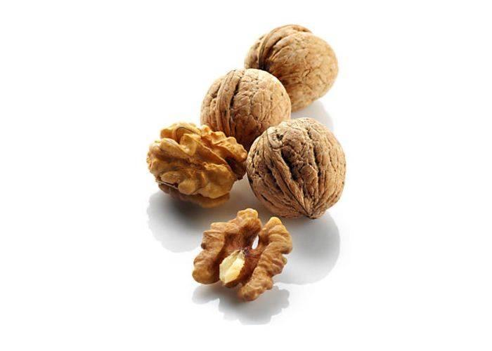 Грецкий орех: польза и вред, лечебные свойства, применение