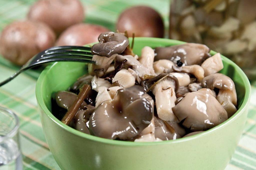 Засолка грибов вешенок на зиму в банках- рецепт пошаговый с фото