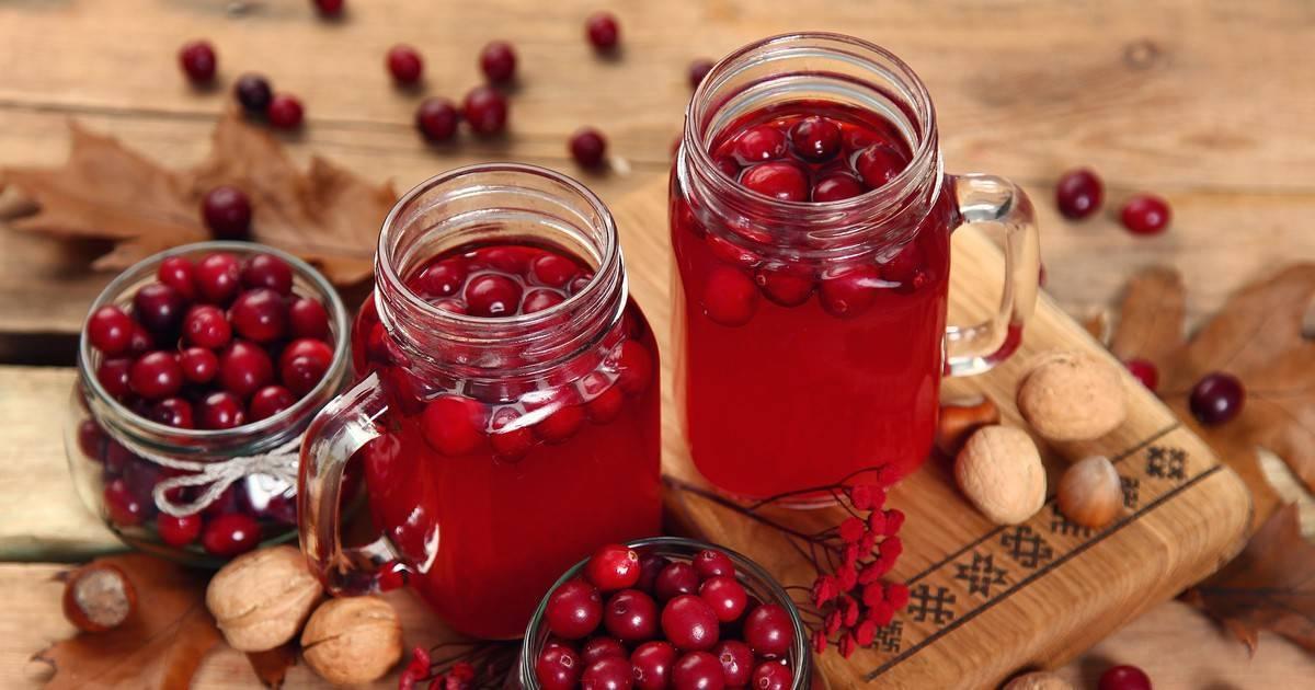 Морс из ягод: как приготовить морс в домашних условиях