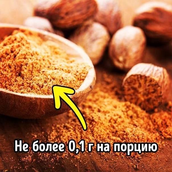 Полезные и опасные свойства мускатного ореха: как и для чего употреблять продукт, кому он противопоказан?
