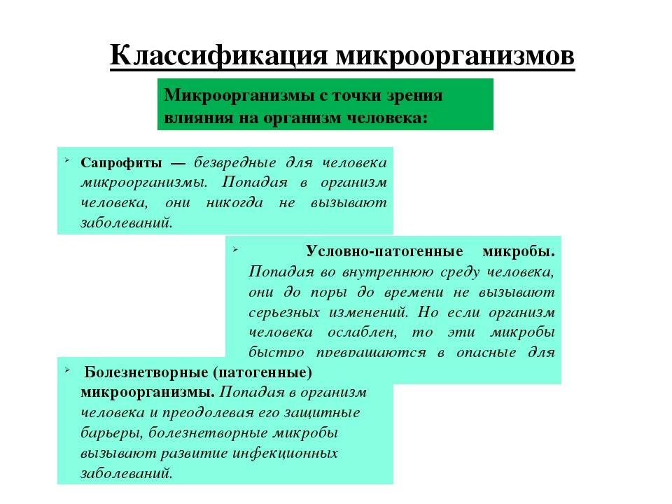 Книга медицинская микробиология: конспект лекций для вузов читать онлайн бесплатно, автор вера александровна подколзина – fictionbook
