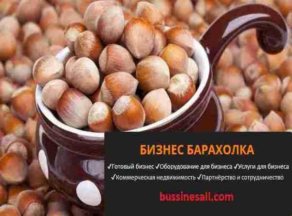 Финансовый план (бизнес-план) орехового бизнеса — портал ореховод