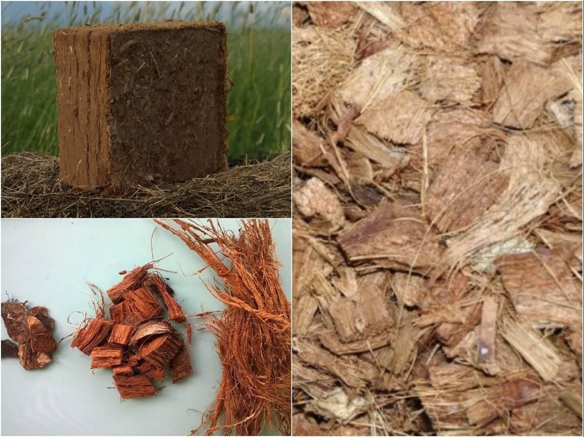 Кокосовый субстрат для рассады, мульчи, выращивания орхидей и иных цветов: применение грунта из волокон растения, посев в брикеты и таблетки из такого торфа