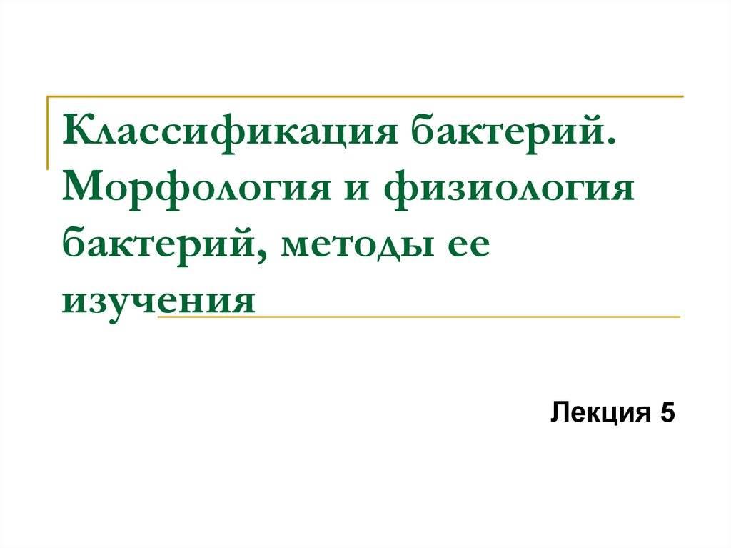 Лекция №5 морфология и систематика микроорганизмов