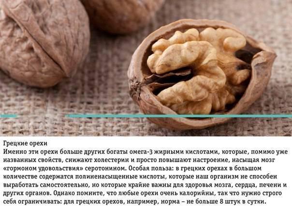 Сколько можно есть орехов в день: норма грецких орехов в сутки для женщин
