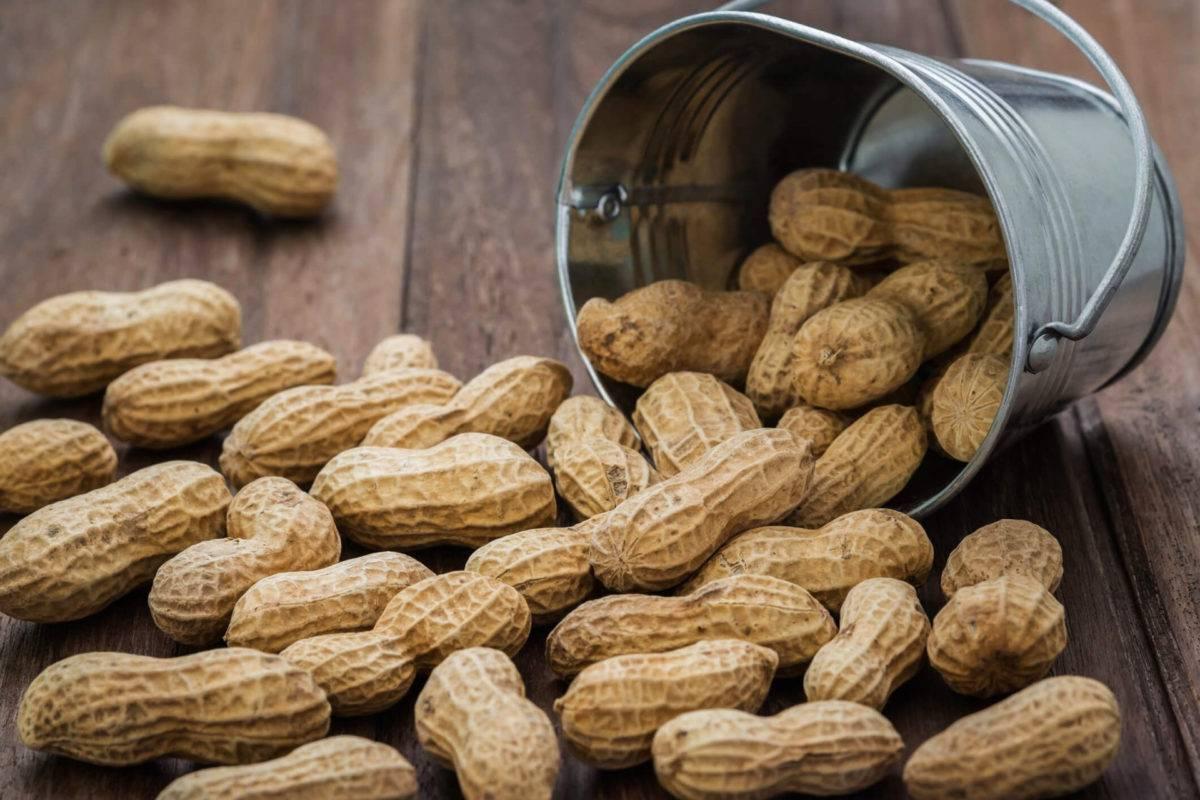 Какие орехи самые полезные для детей - состав и свойства грецких, кедровых, арахиса, фундука, кешью, миндаля