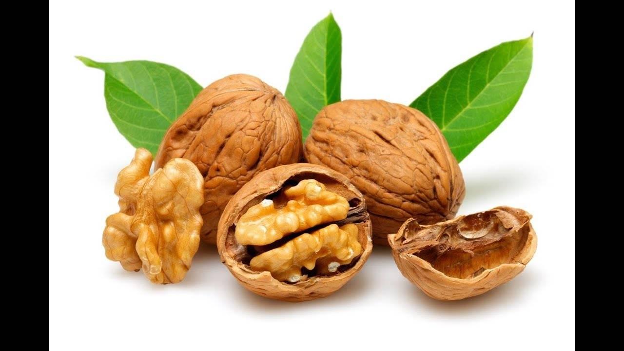 Грецкий орех для нашего организма (польза и вред) +отзывы