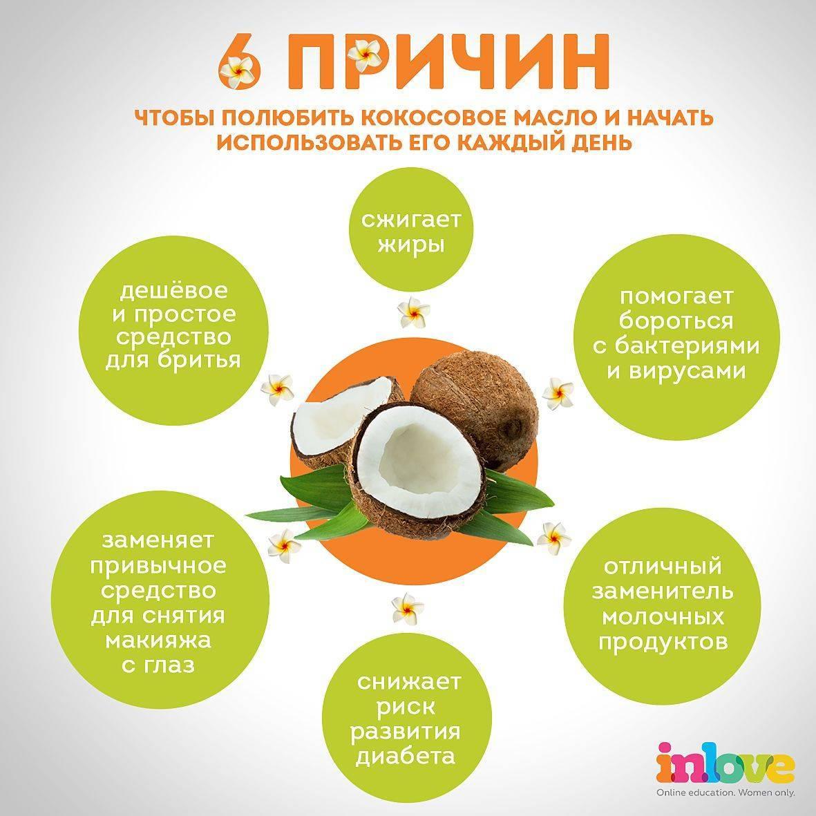 Кокос: калорийность, польза и вред, полезные свойства