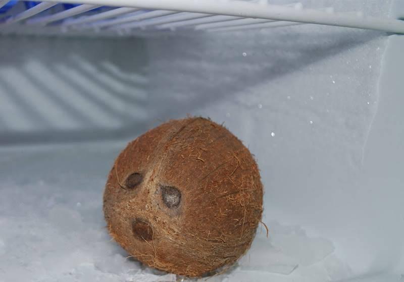 Как хранить кокос в домашних условиях