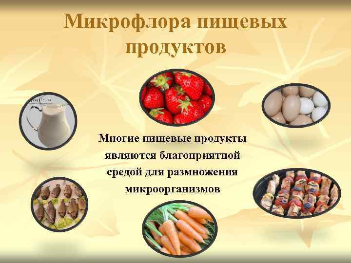 Микробиологический контроль качества пищевых продуктов— компания биовитрум