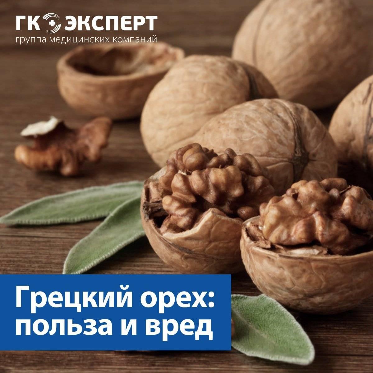 Грецкие орехи: польза и вред для организма, для здоровья, сколько нужно съесть