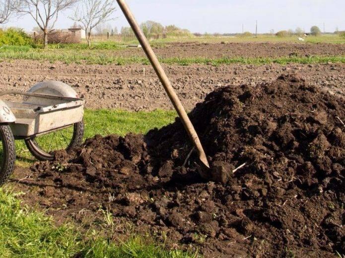 Подготовка почвы к посадкам