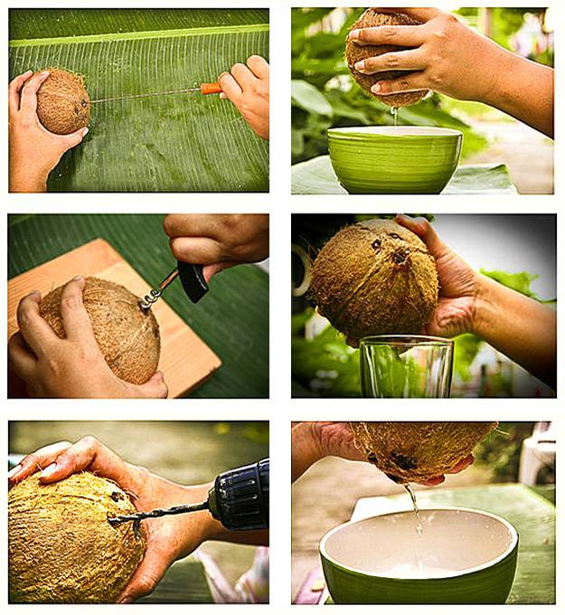 Как легко расколоть кокос