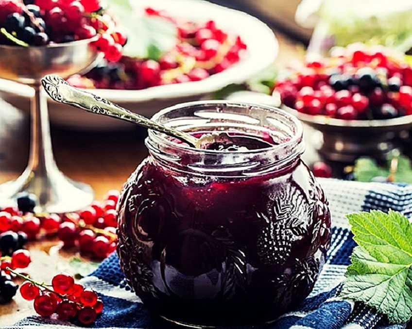 Джем из черной (красной) смородины - 7 простых рецептов