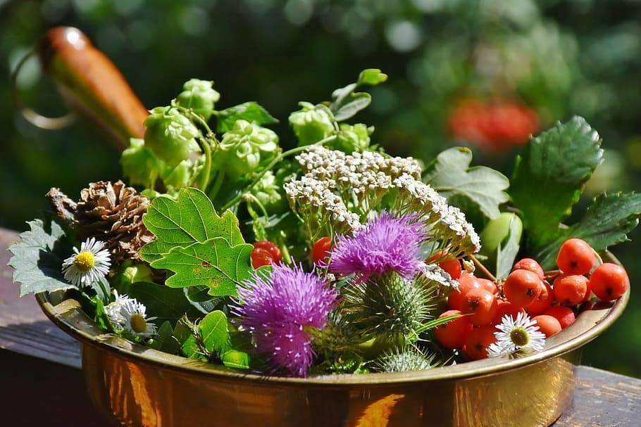 Приправа для овощного рагу: специи способные изменить вкус