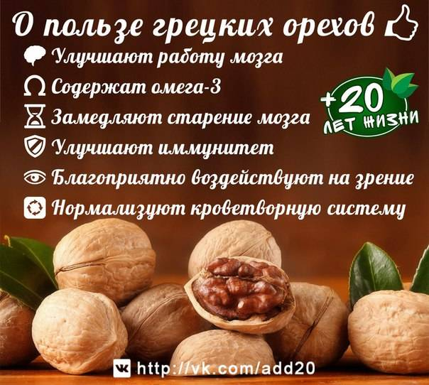Грецкие орехи со сметаной для мужчин рецепт для потенции