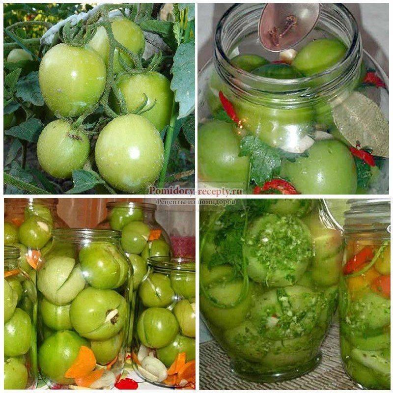 Зеленые помидоры на зиму — самые вкусные и простые рецепты