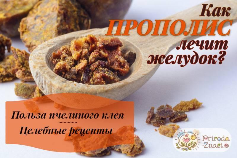 Какие орехи можно кушать пациентам при гастрите различной кислотности?