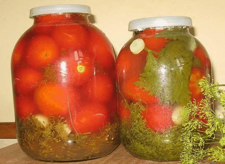 Солёные помидоры на зиму - 5 рецептов приготовления без стерилизации