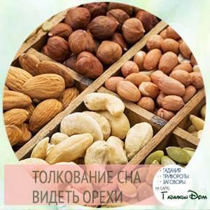 Сонник сажать орехи фундук. к чему снится сажать орехи фундук видеть во сне - сонник дома солнца