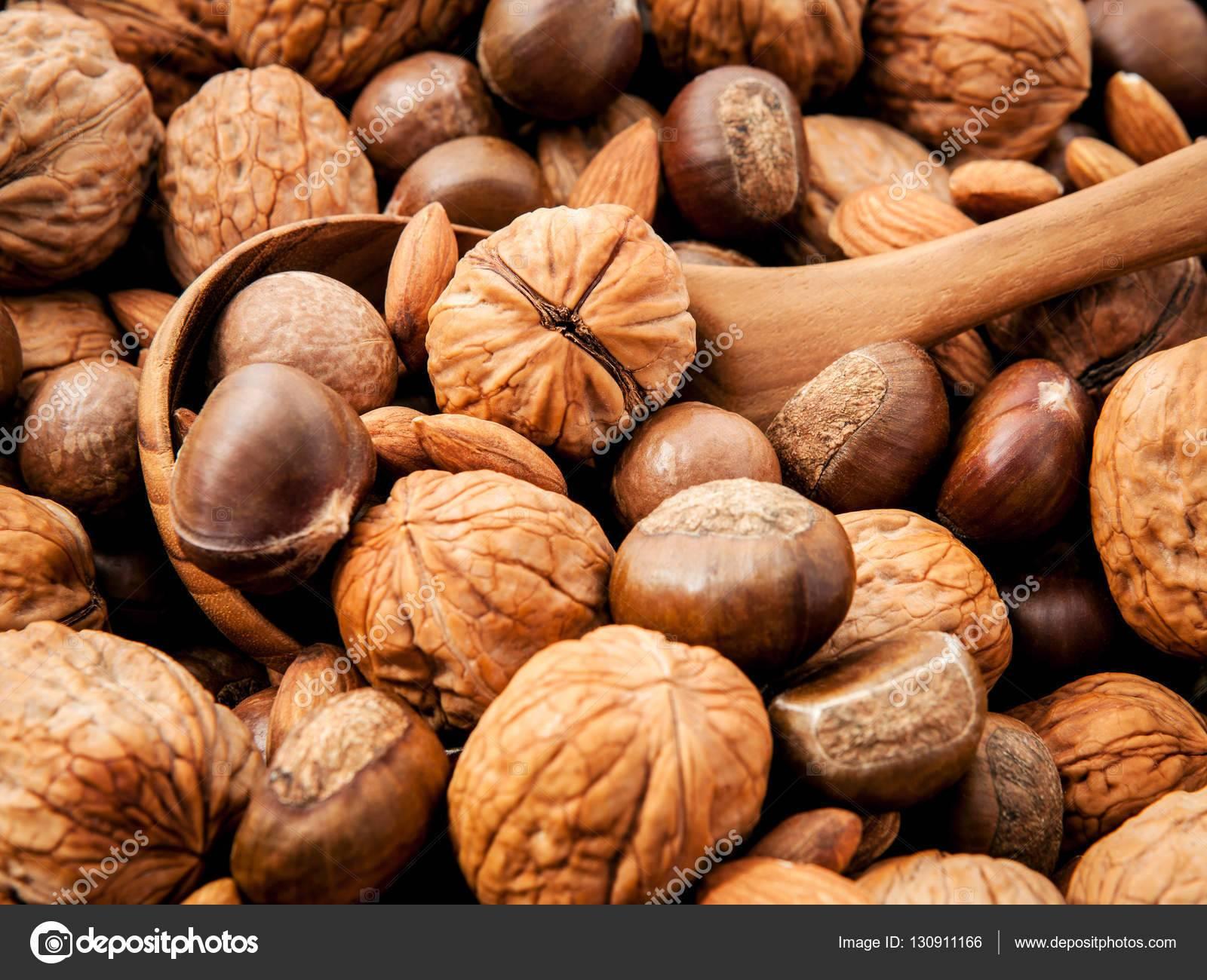 Виды орехов: список названий с описанием полезных свойств | food and health