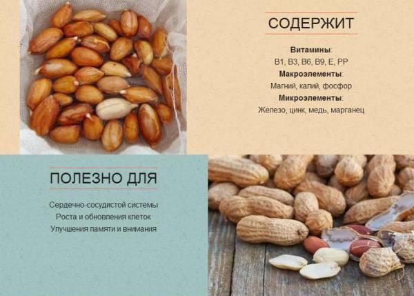 Фисташки: химический состав, содержание витаминов, макро и микроэлементов, и какие вещества в ходят в орешки, чем они богаты и каковы свойства?
