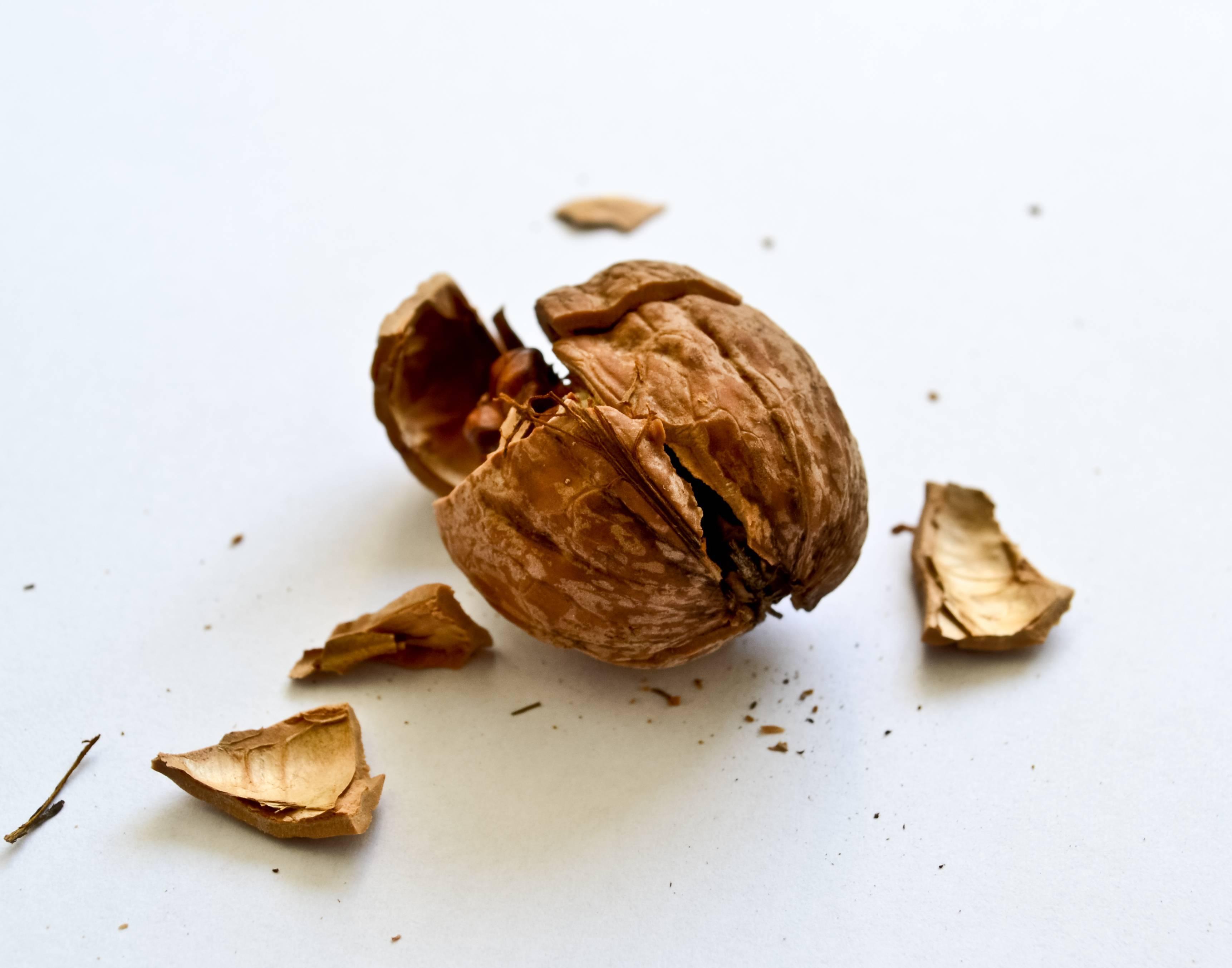7 способов как чистить орехи пекан от скорлупы