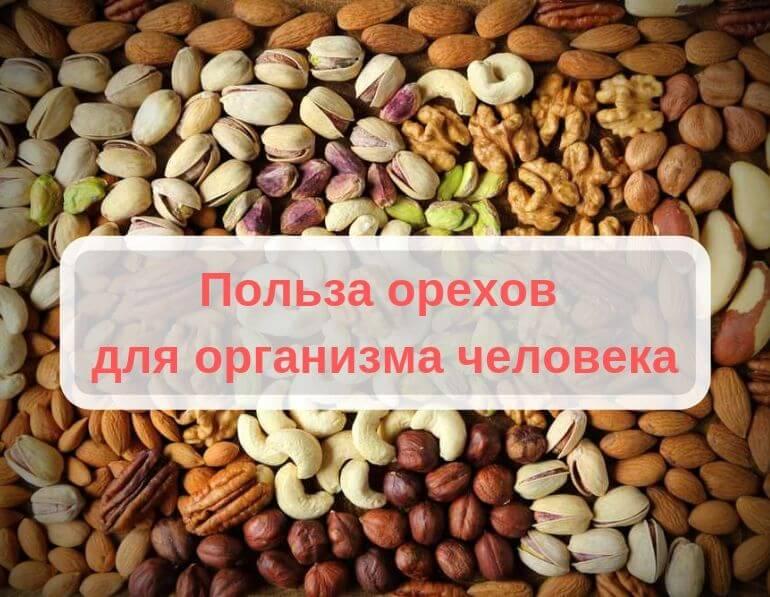 Грецкие орехи польза и вред для организма мужчин и женщин