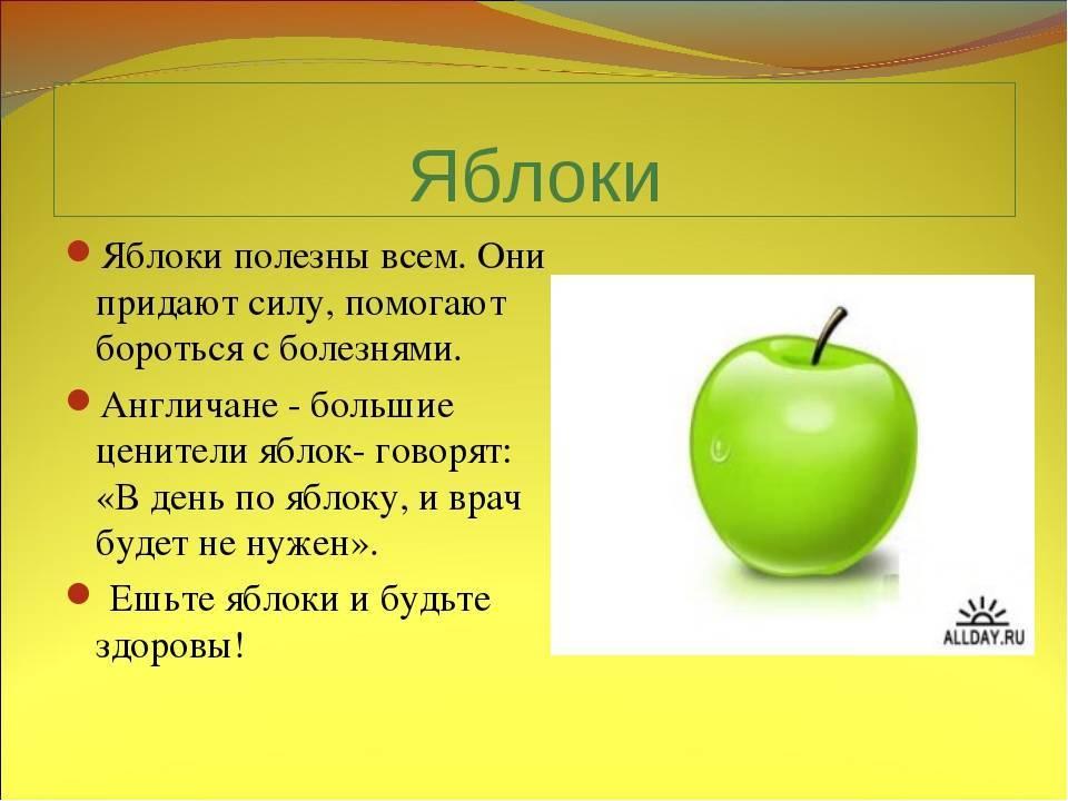 Яблочные семена польза и вред