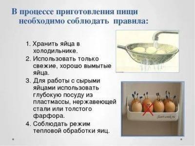 Сбор орехов макадамия: как и когда собирают урожай на производстве и в домашних условиях, а также определение зрелости плода и правила хранения
