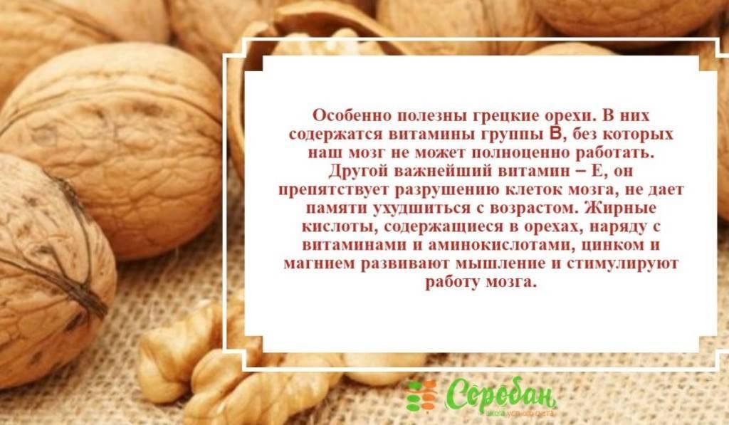 Польза и вред грецких орехов для мозга, волос, сердца, печени