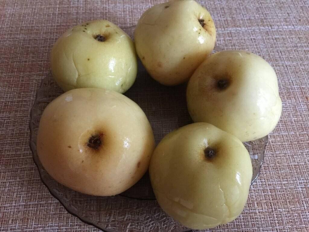 Как мочить яблоки в домашних условиях в банках, пластиковой бочке, ведре: лучшие рецепты на зиму. какие яблоки, сорта яблок можно мочить на зиму: список, названия. как правильно и вкусно замочить ябло