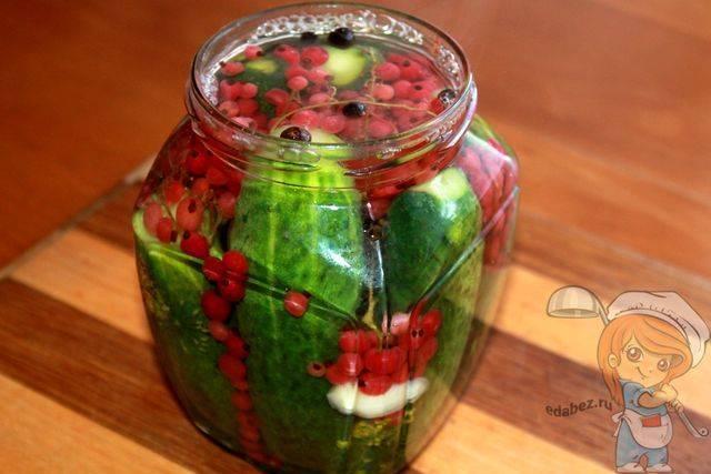 Огурцы, консервированные с соком красной или белой смородины. смородина. сажаем, выращиваем, заготавливаем